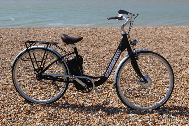 Image of adult electric bike