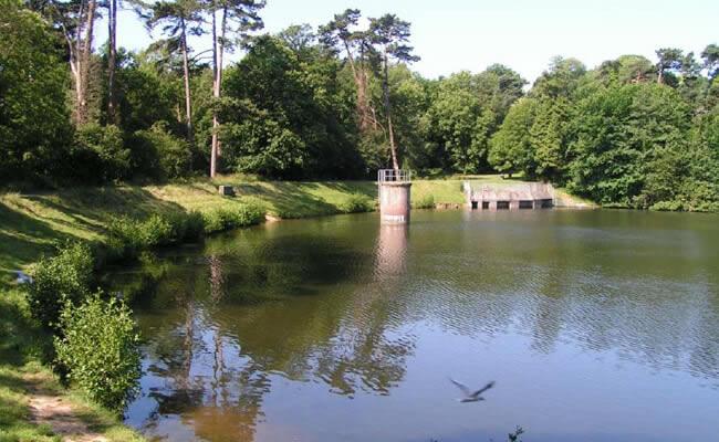 buckshole_reservoir03