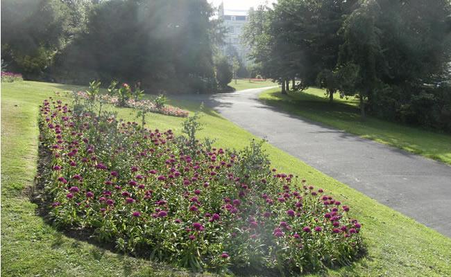 gensing_gardens01
