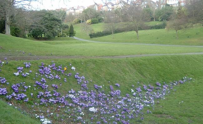 linton_gardens01